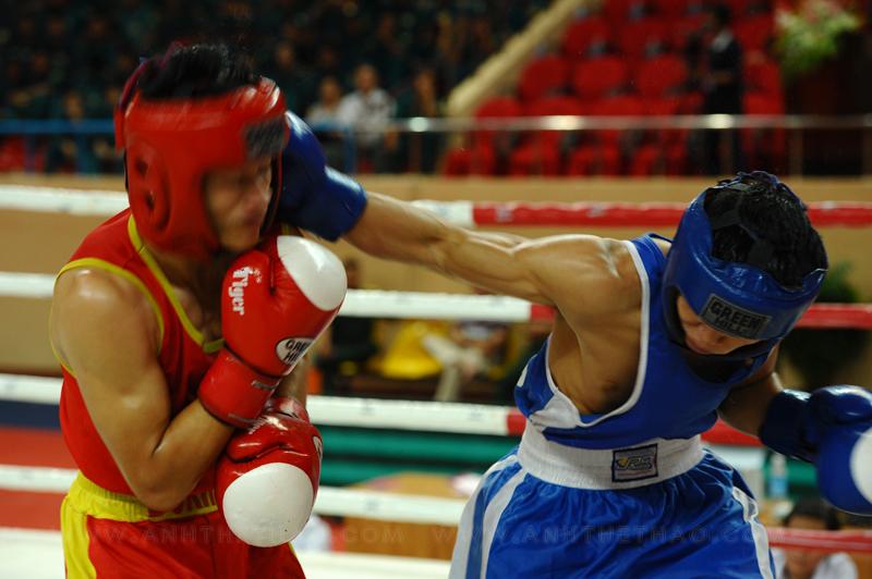 Ảnh boxing 2012
