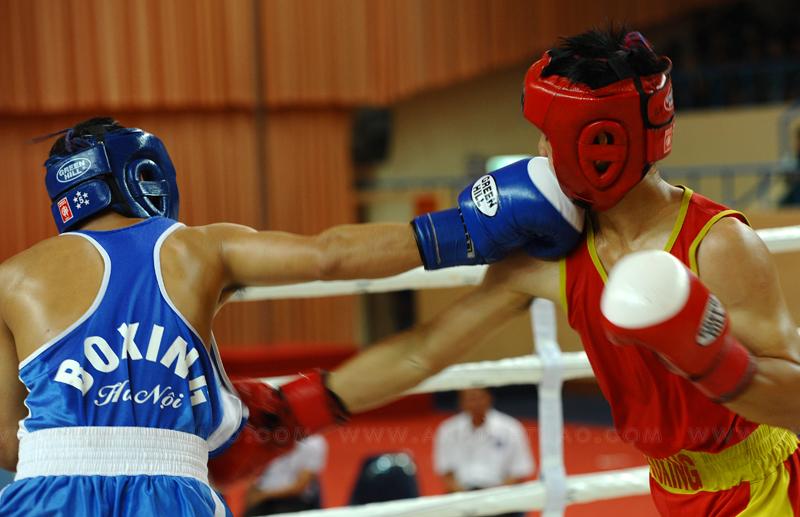 Ảnh boxing 2012 ngày 26-11