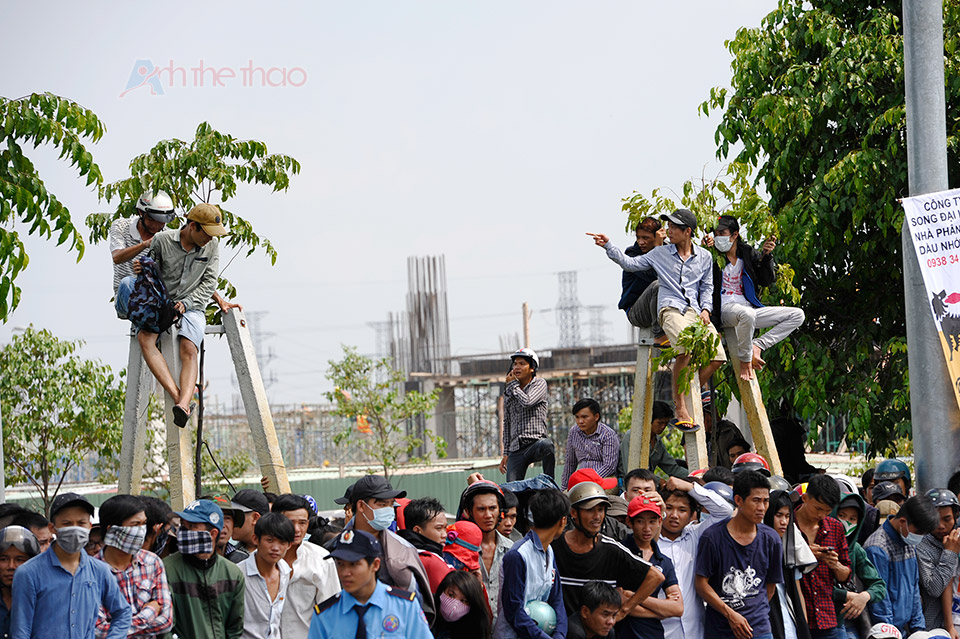 Người xem trèo cả lên cây