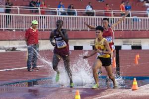 Bộ 3 - Vàng Bạc Đồng steeplechase: Qatar - VN - VN