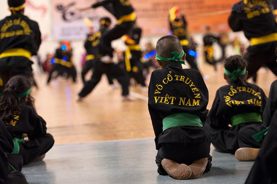 Võ Cổ Truyền Việt Nam 2016